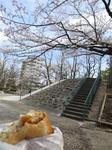 牡丹公園.JPG